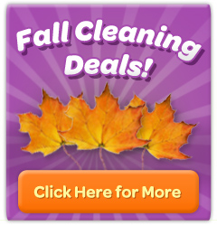 Fall Cleanup Button