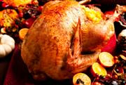 Tips to Cook the Perfect Thanksgiving Turkey
